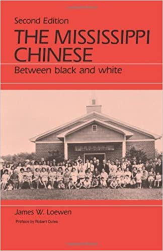 The Mississippi Chinese book cover